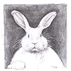 easter bunny portrait by cristina
