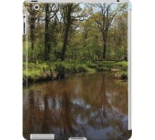 Flechs Water New Forest iPad Case/Skin