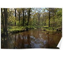Flechs Water New Forest Poster
