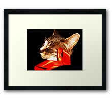 Behind the Red Ribbon Framed Print