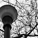 Streetlight by hynek