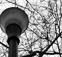 Streetlight by hynek