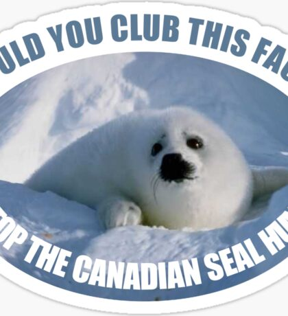 Stop The Canadian Seal Hunt Sticker