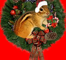 ╰ ☆ ╮ ♥  ღ ☼  ITS A HARD CANDY CHRISTMAS  ╰ ☆ ╮ ♥  ღ ☼ by ✿✿ Bonita ✿✿ ђєℓℓσ