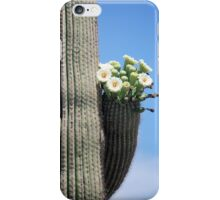 Saguaro Bouquet iPhone Case/Skin
