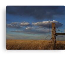 Where the Fence Used To Be Canvas Print