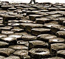 Causeway Walk by macbuckley