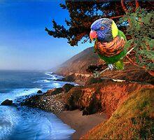 797-Bird Watcher by George W Banks