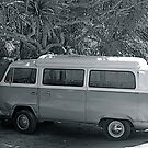 VW in Black and White by Batgirl