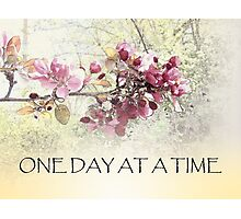 One Day at a Time Pink Blossoms Photographic Print