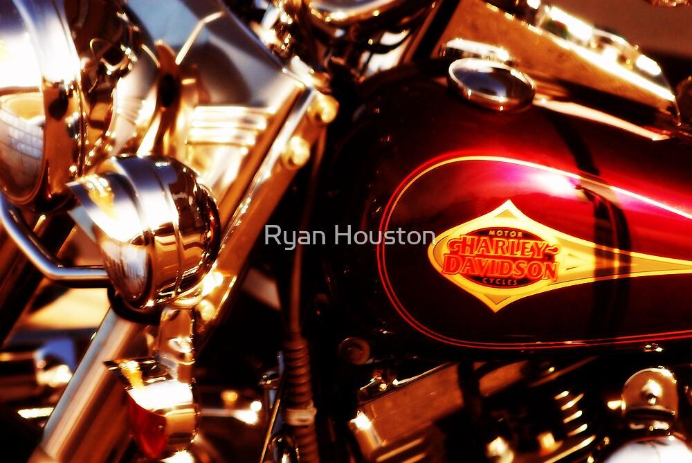Harley Davidson Gas Tank by Ryan Houston
