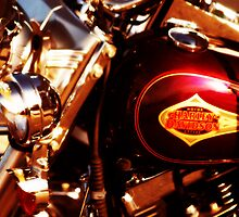Harley Davidson Gas Tank by Ryan Houston
