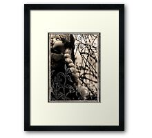To sleep, perchance to dream... Framed Print