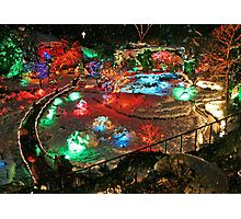 Christmas Lights in Butchart Gardens ..... Photographic Print