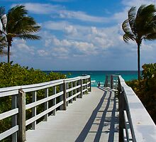 Boardwalk, Sunshine and Palm Trees by photogurl