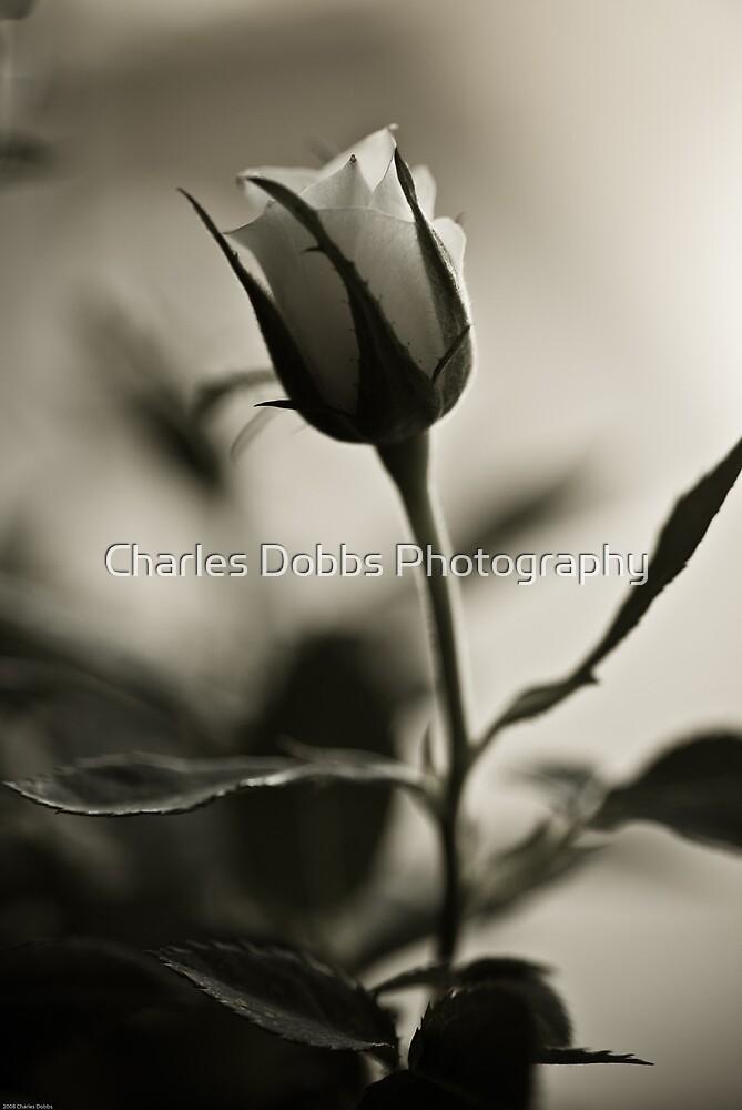 Nostalgic by Charles Dobbs Photography