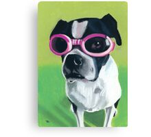 Boston Terrier in Goggles Canvas Print