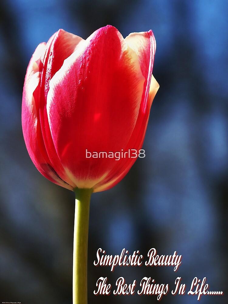 Simplistic Beauty by bamagirl38