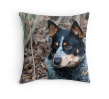 Blue Healer Friend Throw Pillow
