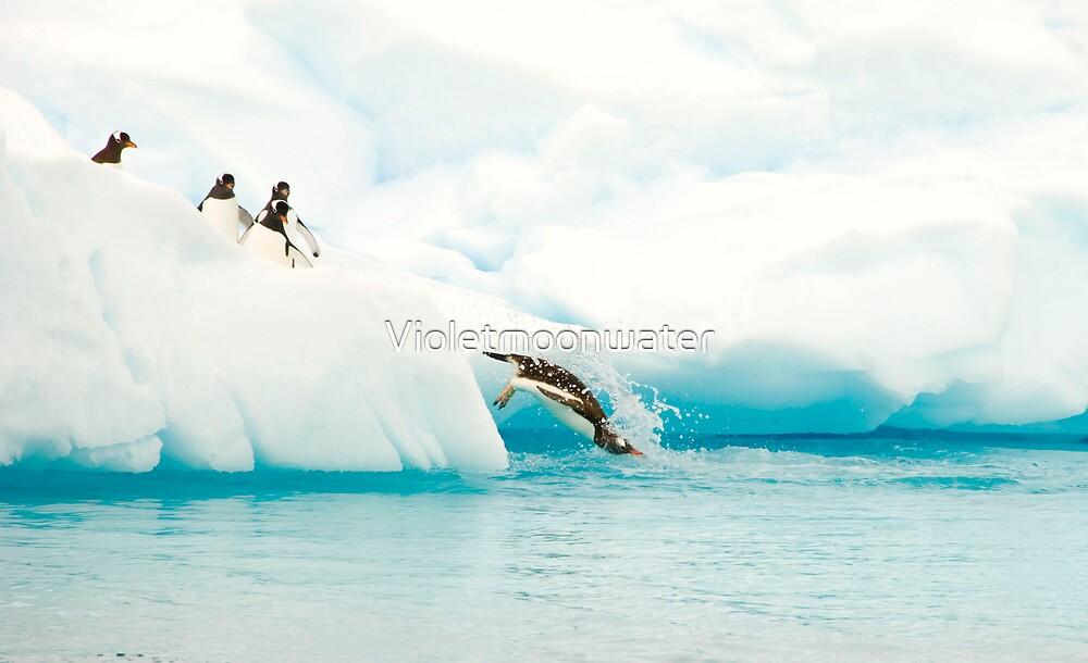 Splash by Violetmoonwater