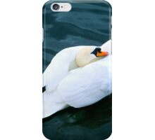 Beauty and the Lake iPhone Case/Skin
