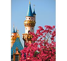Sleeping Beauty Castle in the Spring Photographic Print
