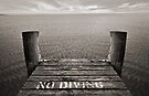 No Diving by SD Smart
