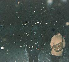 Snow Walks by trulyshannon