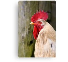 What's Up? Canvas Print