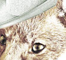 Robin Hood Sticker