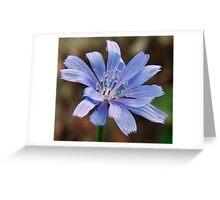 Beautiful Blue Weeds Greeting Card