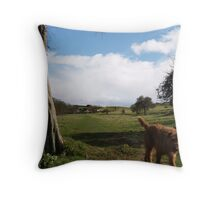 Past the Tree, Down the Path Throw Pillow