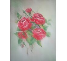 Red Morning Roses Photographic Print