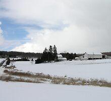Winter Farmscape by James Wheeler