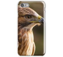 Red Tailed Buzzard iPhone Case/Skin