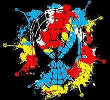 Spider web by Claudia Santos