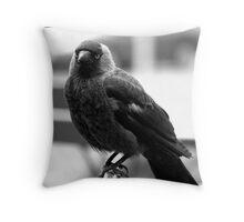 Jackdaw Throw Pillow