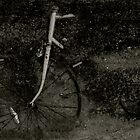 Bicycle in Concrete  by acerny