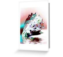 Colorful Conch Greeting Card