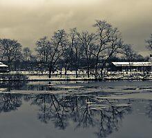 reflection - 2 by rafaj