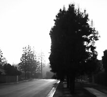 Twilight Zone by Sumfellanamerya