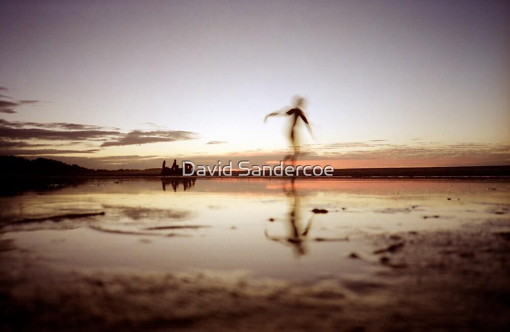 The Dance by David Sandercoe