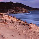 Darby beach - Wilsons Promontory by Tony Middleton