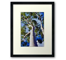 Ghostly Limbs Framed Print