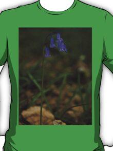Single Bluebell in Prehen Woods, Derry T-Shirt