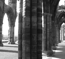 Whitby Abbey i by JoLennox
