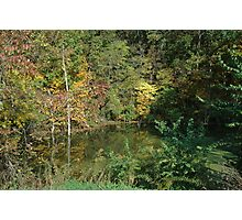 Isolated pond Photographic Print