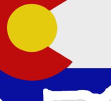 Colorado Buffalo Sticker