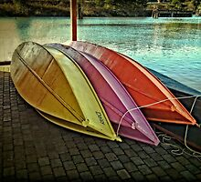 The Wooden Row Boats by Thom Zehrfeld