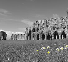 Whitby Abbey by JoLennox